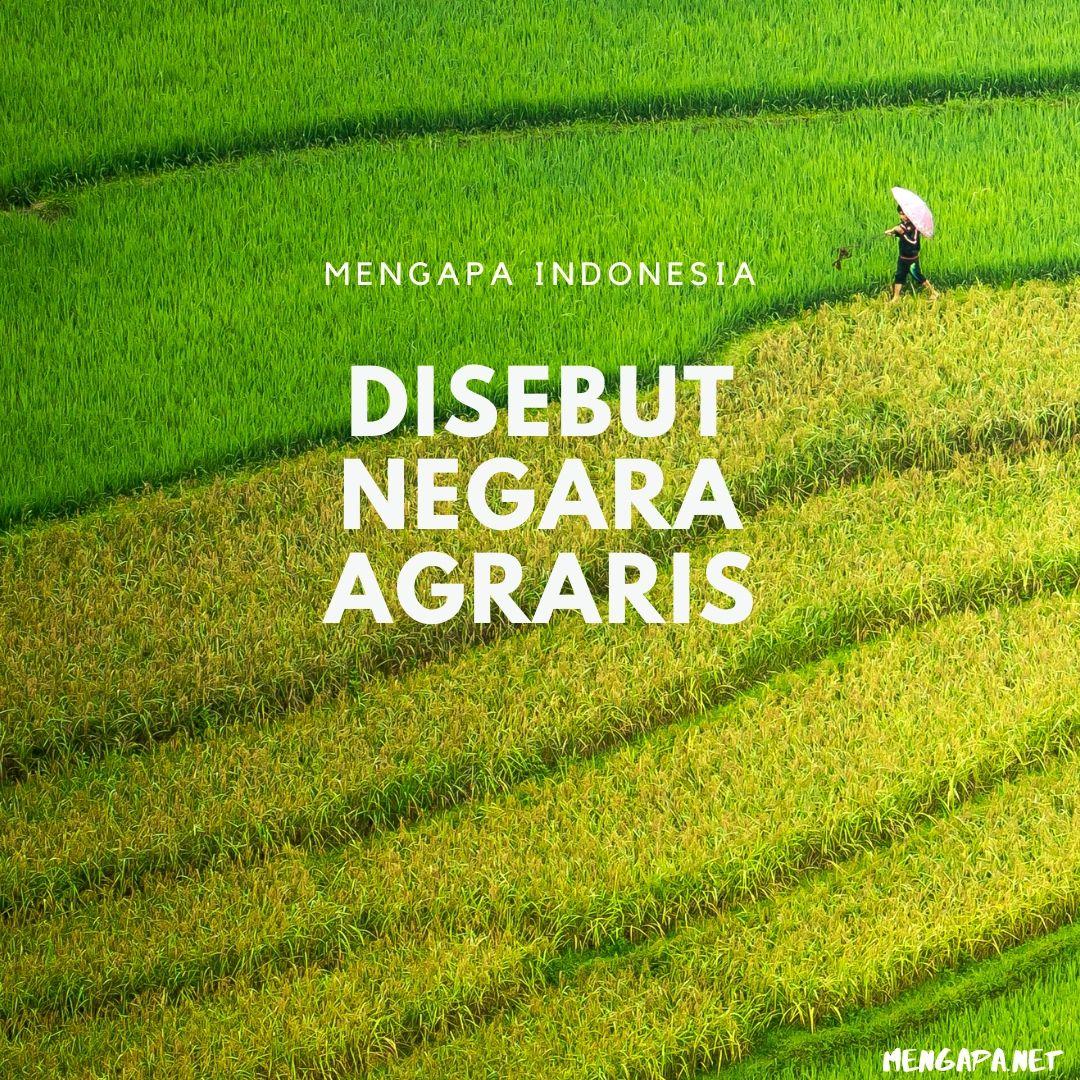 Mengapa Indonesia Disebut Negara Agraris