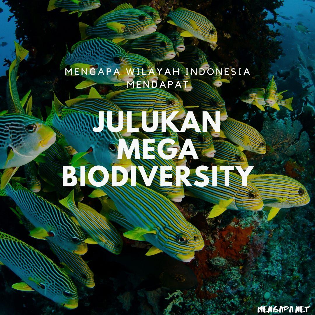 mengapa wilayah indonesia mendapat julukan mega biodiversity
