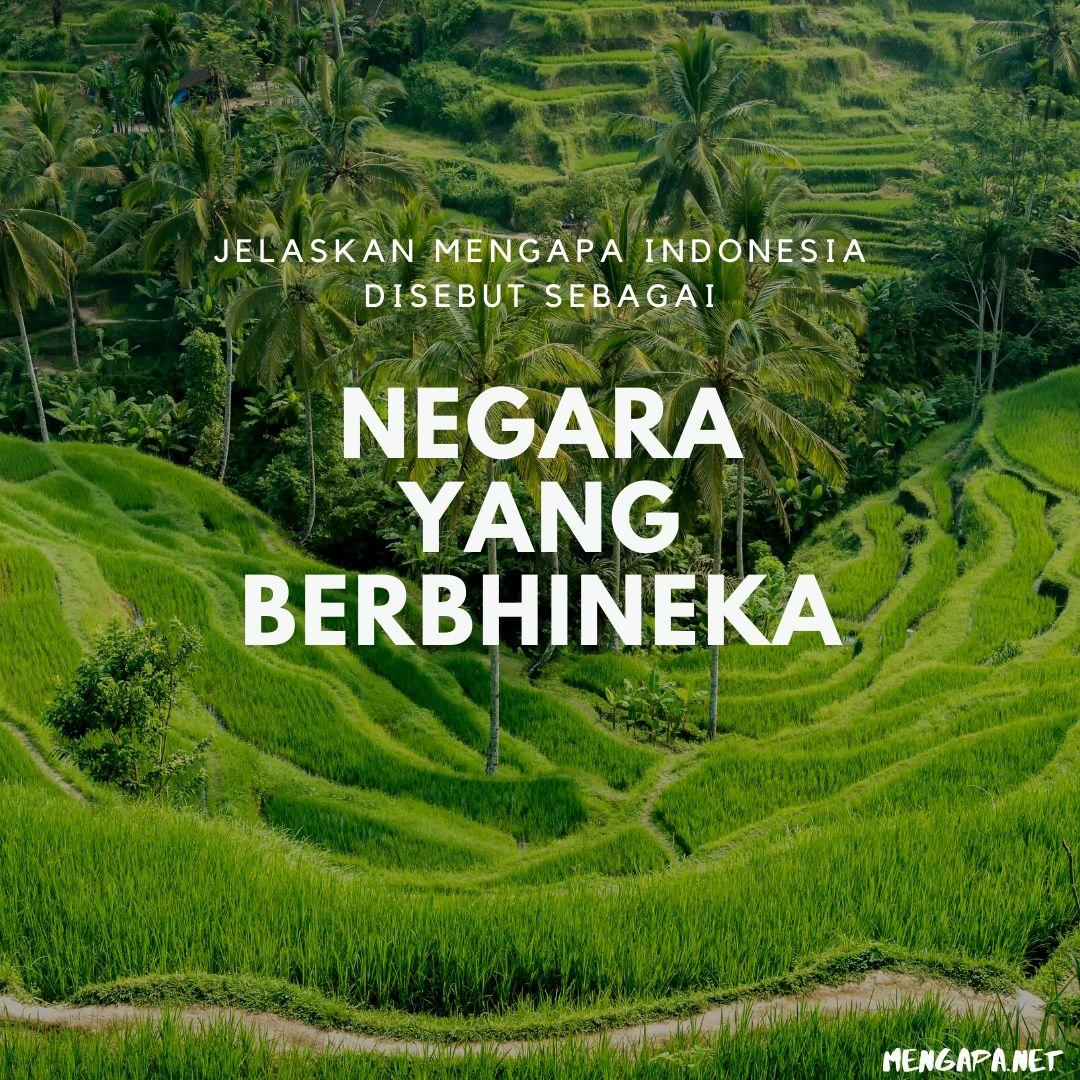 jelaskan mengapa indonesia disebut sebagai negara yang berbhineka