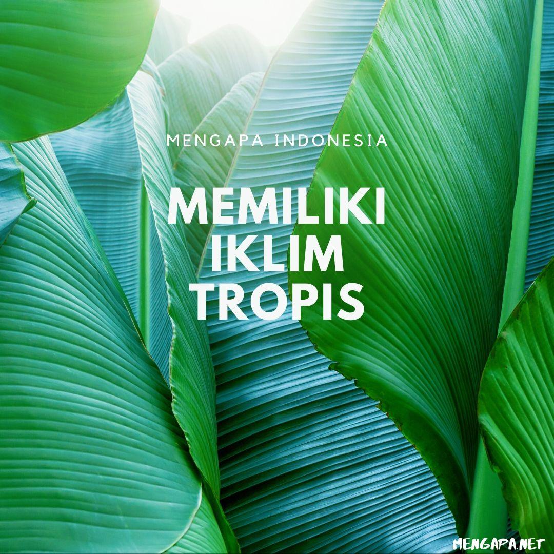 mengapa indonesia memiliki iklim tropis