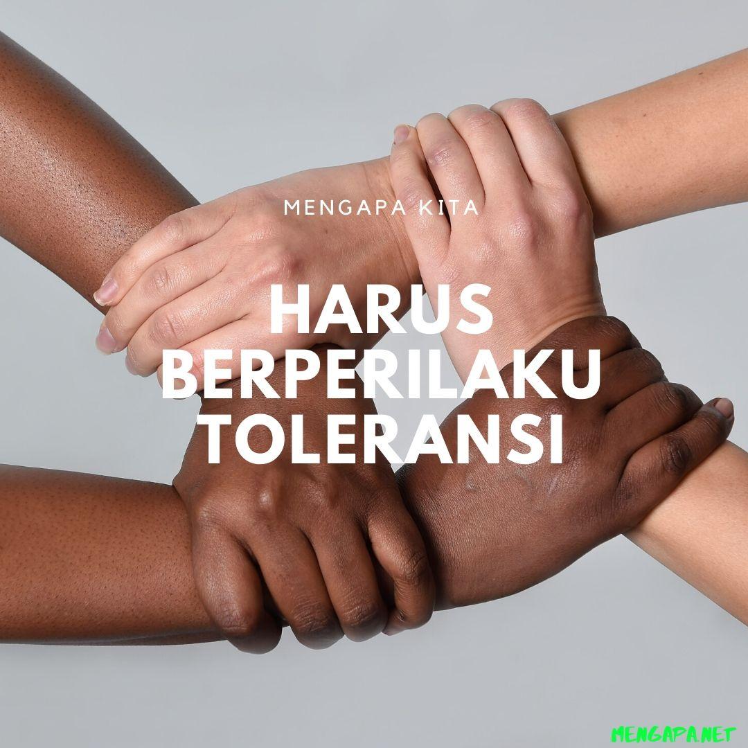 Mengapa Kita Harus Berperilaku Toleransi