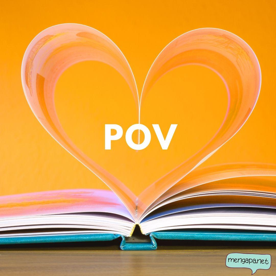 apa itu POV artinya - arti POV adalah
