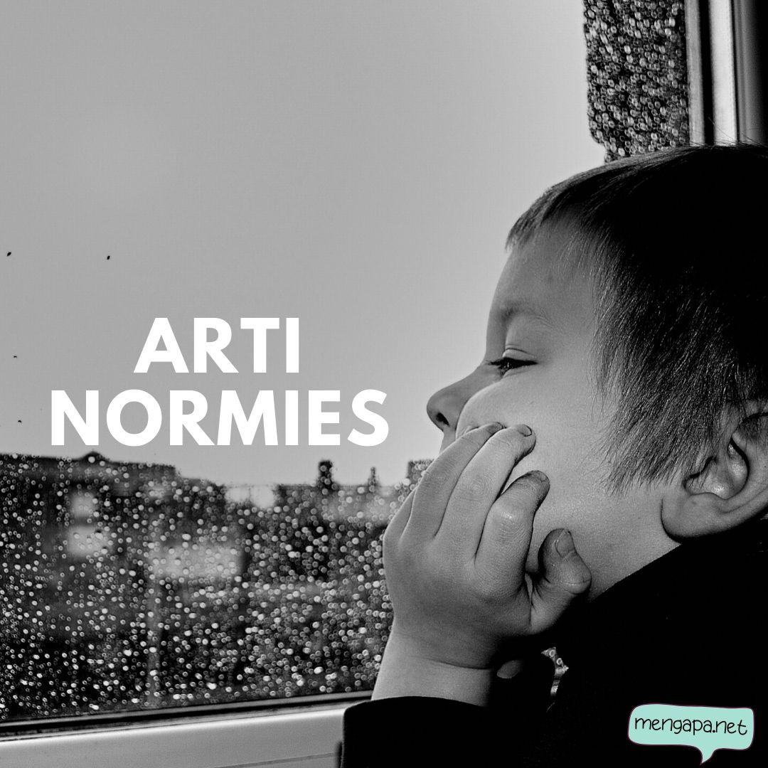 apa itu normies artinya - arti normies adalah