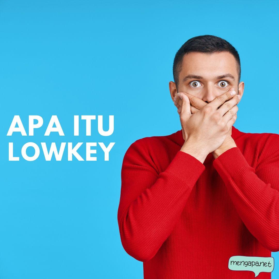 apa itu lowkey artinya - arti lowkey adalah