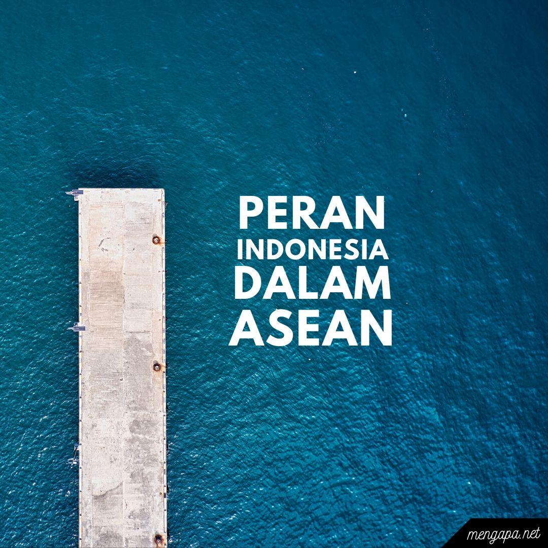 peran indonesia dalam asean di bidang politik ekonomi soial pendidikan